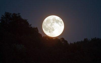 Energy Update for Full Moons